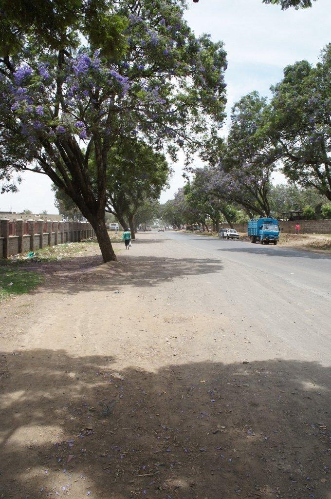 Vägen genom Nakurus förort